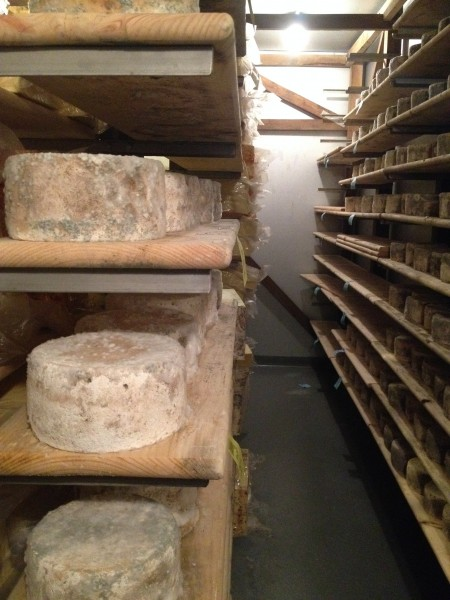 Cheese Room Lively Run Dairy