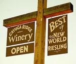 cayuga-ridge-winery