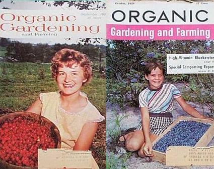 Photo from: http://www.cityfarmer.info