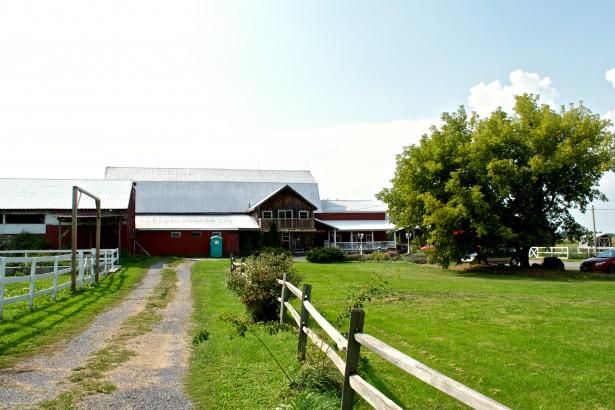 Lively Run Dairy Farm