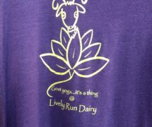 Yoga T-shirt Plum