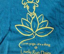 Yoga T-shirt Teal
